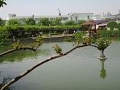 4/23紫藤園:ZZDSC04763.JPG