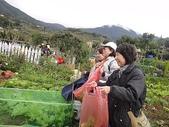 grace花菜園:ccDSC00292.JPG