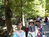 苗栗雲水山莊:1-8.JPG