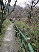 賞櫻:cc2011-3-4 (183).JPG