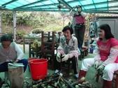 關西採竹筍:ZZDSC03344.JPG