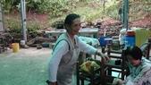 關西採竹筍:ZZDSC03350.JPG