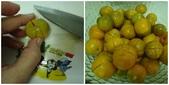 金桔醬:a2.jpg