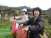 grace花菜園:ccDSC00291.JPG