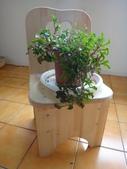 木工課:zzDSC02431.JPG