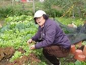grace花菜園:ccDSC00297.JPG