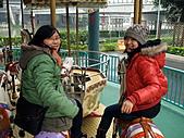 2008.02.09-10大過年的台北遊:1580786269.jpg