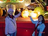 2007.03.09台灣燈會with Friends:DSC06998