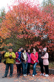 2012-1216大雪山賞楓行day02:DSC_5856.jpg