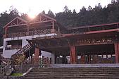 100317悠遊在櫻花的最高殿堂:阿里山櫻花:_DSC0733.JPG