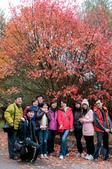 2012-1216大雪山賞楓行day02:DSC_5857.jpg