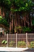 2012-1005花蓮行day01-南方澳觀景台、粉鳥林漁港、辣椒博物園、清水斷崖:DSC_0291.jpg