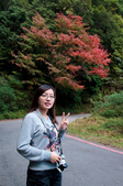 2012-1215大雪山賞楓行(雲海落日、星空):DSC_5323.jpg