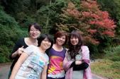 2012-1215大雪山賞楓行(雲海落日、星空):DSC_5324.jpg
