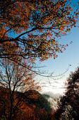 2012-1215大雪山賞楓行(雲海落日、星空):DSC_5489.jpg