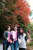 2012-1215大雪山賞楓行(雲海落日、星空):DSC_5325.jpg