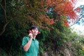 2012-1215大雪山賞楓行(雲海落日、星空):DSC_5328.jpg