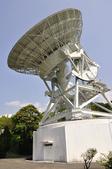 100312陽明山衛星站台附近的櫻花:_DSC0001.JPG
