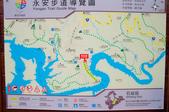 2013-0416石碇千島湖八卦茶園:DSC_0300.jpg