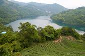 2013-0416石碇千島湖八卦茶園:DSC_0304.jpg