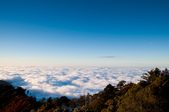2012-1215大雪山賞楓行(雲海落日、星空):DSC_5546.jpg