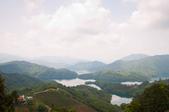 2013-0416石碇千島湖八卦茶園:DSC_0227.jpg