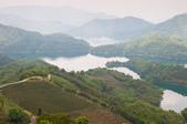 2013-0416石碇千島湖八卦茶園:DSC_0229.jpg