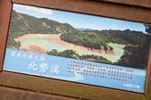 2013-0416石碇千島湖八卦茶園:DSC_0309.jpg