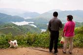 2013-0416石碇千島湖八卦茶園:DSC_0232.jpg