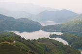 2013-0416石碇千島湖八卦茶園:DSC_0233.jpg