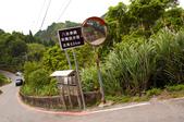 2013-0416石碇千島湖八卦茶園:DSC_0237.jpg