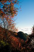 2012-1215大雪山賞楓行(雲海落日、星空):DSC_5513.jpg