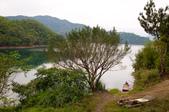 2013-0416石碇千島湖八卦茶園:DSC_0258.jpg