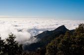 2012-1215大雪山賞楓行(雲海落日、星空):DSC_5413.jpg