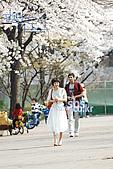 智鉉寓 的戲劇-我的甜蜜首爾:20080527184739_1