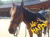 智鉉寓 的戲劇 - 仁顯王后的男人:2012-05-22 16_1.png