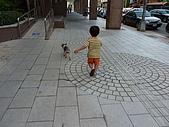 小黑3歲7~8個月:2009_0707_173904.jpg