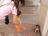 小黑3歲7~8個月:2009_0707_174141.jpg