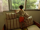 小黑3歲7~8個月:2009_0707_175249.jpg
