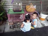 小黑3歲7~8個月:2009_0803_164138.jpg