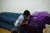 小黑3歲7~8個月:2009_0802_140306.jpg