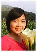 竹子湖海芋 Calla Lily:Calla Lily.jpg