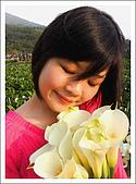 竹子湖海芋 Calla Lily:Smell nice.jpg