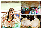 Phillipines ~ Cebu 宿霧:Juicy coconut