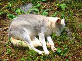 Hokkaido ~:Sleeping Beauty ~