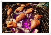 野宴日式炭火燒肉: