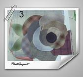 拼布-大包小包:玫瑰3.jpg