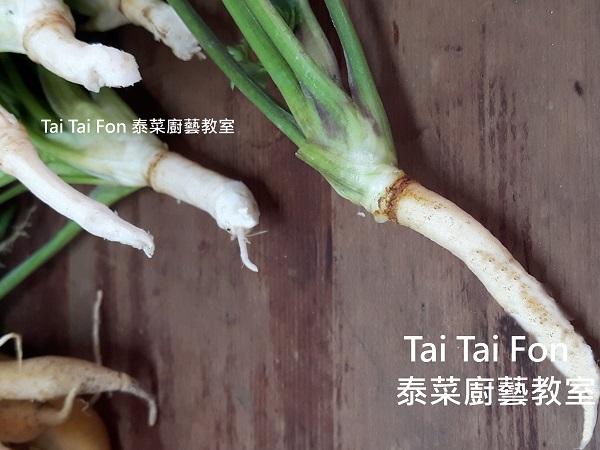 香菜根的培植:部落格首.jpg
