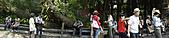 民國99年白花油國際協辦大自然的藥草鋪之旅:99年白花油國際協辦大自然的藥草鋪之旅-010.jpg