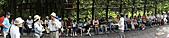 民國99年白花油國際協辦大自然的藥草鋪之旅:99年白花油國際協辦大自然的藥草鋪之旅-014.jpg